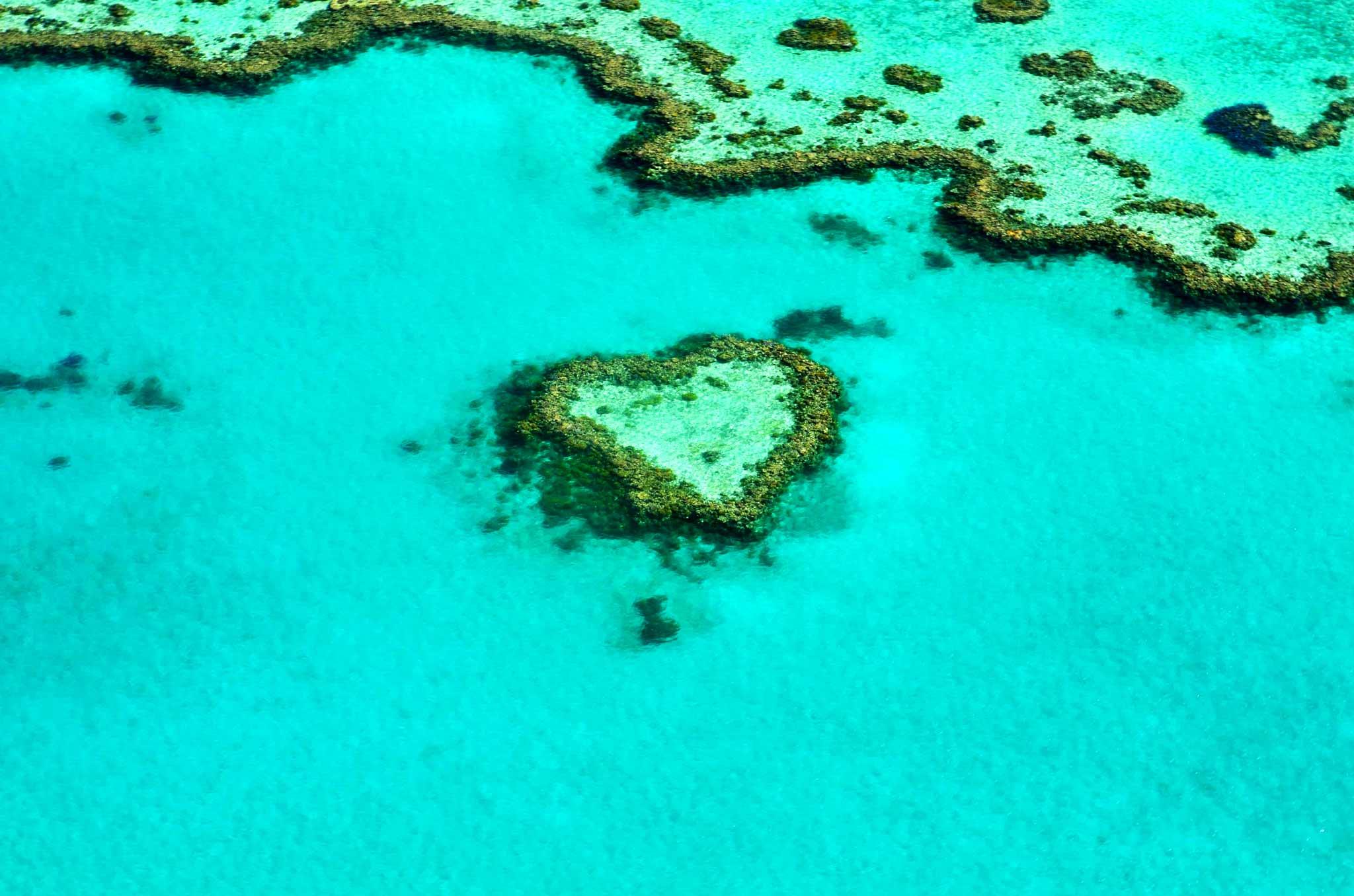Australasian beach holiday