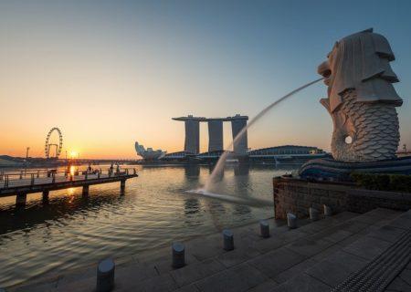 Asia, Sea Lion, Core Zone, Lion, The Business, Park